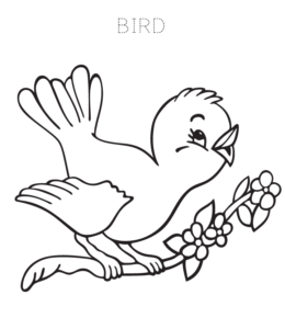 Bird Coloring Page 4 For Kids
