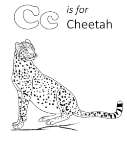 Cheetah | Free Printable Templates & Coloring Pages | FirstPalette.com | 300x260