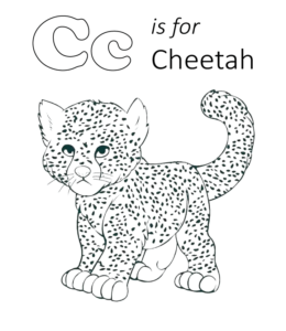 Cheetah Coloring Pages   Playing Learning
