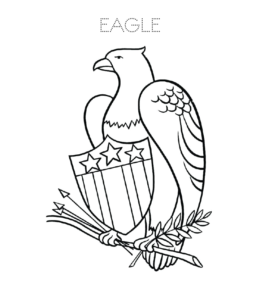 Eagle Coloring Pages Playing Learning