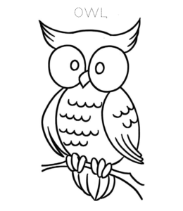 Owl Coloring Page 4 For Kids