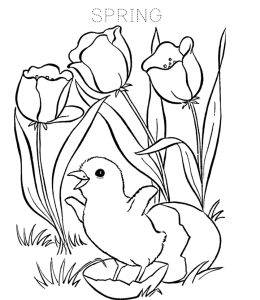 spring coloring page 3 for kids - Spring Coloring Pictures 3